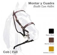 Leather Halter-bridle with leather reins